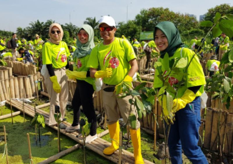 Photo of Pemprov DKI Bersama Relawan Jepang Tanam Bakau