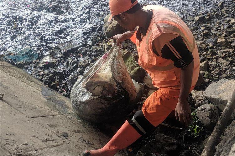 Photo of Petugas PPSU Angkat Limbah Hewan Kurban yang Dibuang ke Kali Ancol