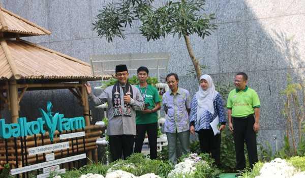 Photo of Peresmian Balkot Farm (Pertanian Balaikota DKI Jakarta) Oleh Gubernur DKI Jakarta